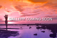 sunset-COMING-SOON